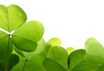 Feiern wie die Ir(r)en: Am St. Patrick's Day gibt's 20 Euro Rabatt auf jede Mietwagenbuchung