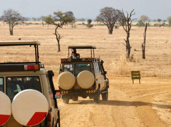 Wenn die Reise zum Abenteuer wird: Aktivitäten als Inspirationsquelle für Deinen Urlaub