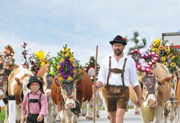 Goldener Reiseherbst – Feier mit bei den schönsten Herbstfesten Europas.