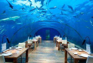 Unser Top-10-Schlemmerguide: Besondere Restaurants weltweit