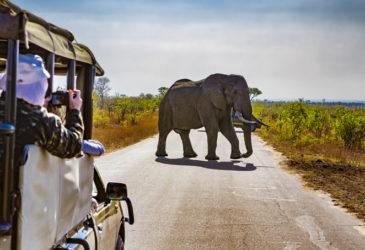Linksverkehr: So läuft im Mietwagenurlaub alles rund